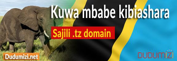 Domain Banner Simu